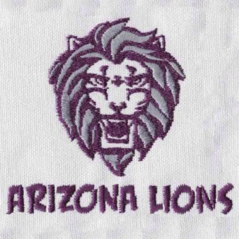 sports team embroidery